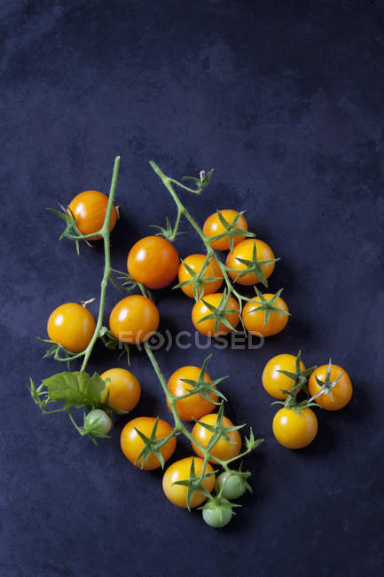 Cherry tomatoes 'Golden Nugget' on dark ground — Stock Photo
