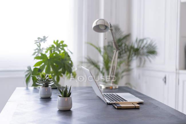 Interieur eines modernen Coworking Space — Stockfoto