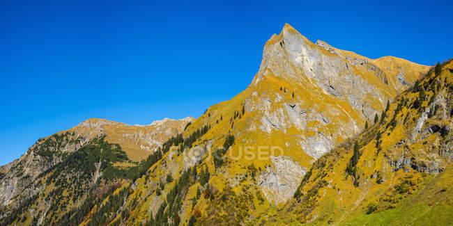 Германия, Бавария, Allgaeu, Oytal, осенний лес в Альпах Альп с горой Химмельхорн — стоковое фото