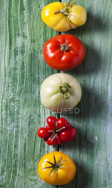 Reihe von fünf verschiedenen Tomaten auf grünem Holz — Stockfoto