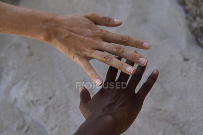 Руки двух женщин — стоковое фото