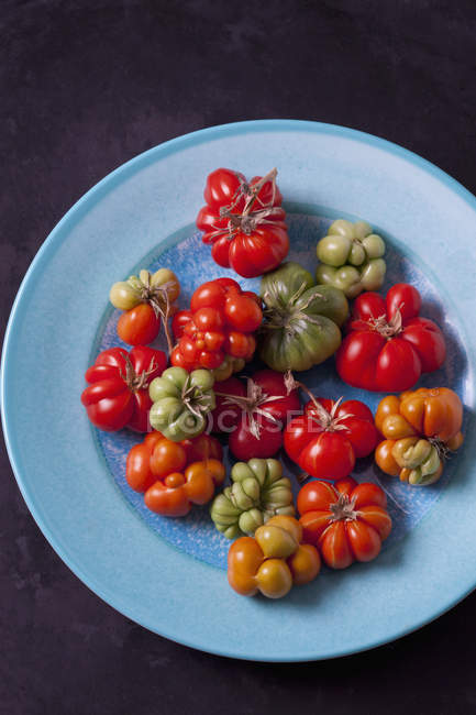 Tomates cereja 'Voyage' em prato azul claro — Fotografia de Stock