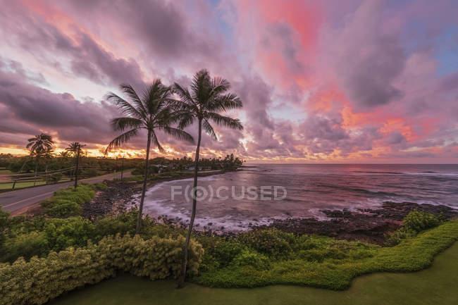 Usa Pazific Ocean, Hawái, Kauai, Poipu, Hoai Bay, Palms at beach at dawn - foto de stock