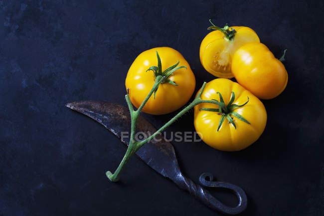 Tomates inteiros e cortados de Azoychka e uma faca velha na terra escura — Fotografia de Stock