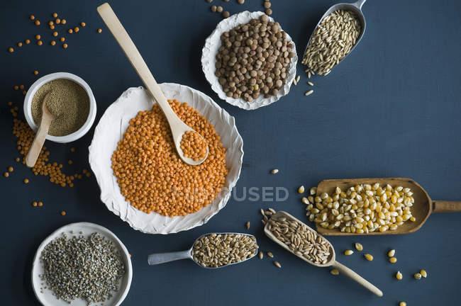 Красная чечевица, коричневая чечевица, амарант, пшеница, спельта пшеницы и кукурузы в миски и на ложках — стоковое фото