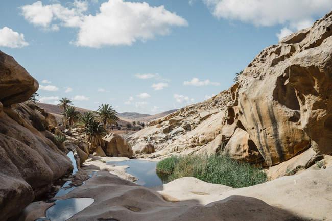 Испания, Канарайские острова, Фуэртевентура, скальные образования — стоковое фото