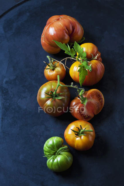Tomates de ternera enteros y en rodajas 'Chocolate Stripes' en terreno oscuro - foto de stock