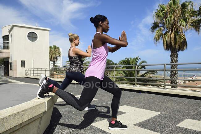 Две женщины занимаются фитнесом на открытом воздухе — стоковое фото