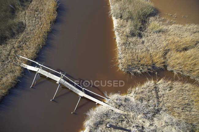 США, Марш на східному узбережжі Меріленду з пішохідною доріжкою та пішохідним мостом, підвищення рівня моря через глобальне потепління — стокове фото