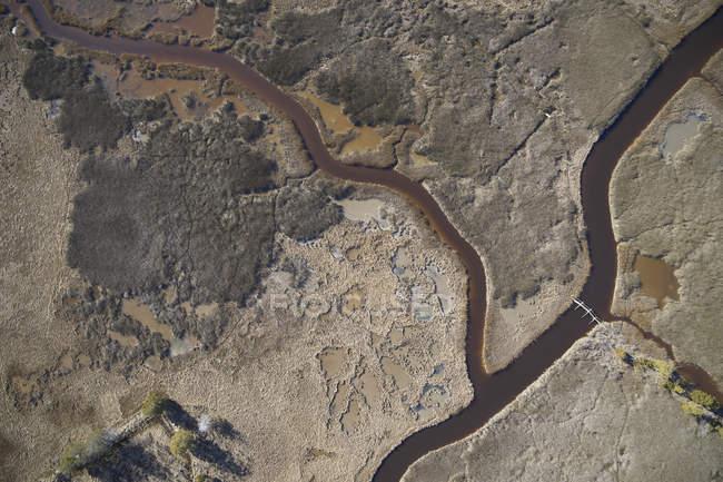 EUA, pântano na costa leste de Maryland com um caminho a pé e ponte pedonal, aumento do nível do mar devido ao aquecimento global — Fotografia de Stock