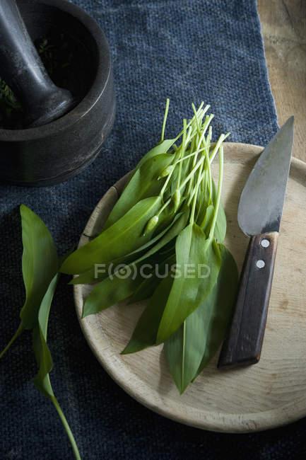 Ramson і ножем на дерев'яну дошку, ступу та чашу кедрового горіха — стокове фото