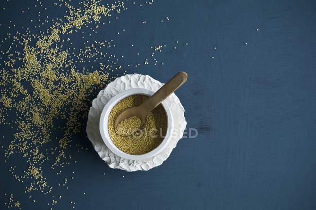 Муравьи в миске с деревянной ложкой — стоковое фото