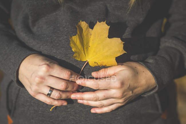 Nahaufnahme einer schwangeren Frau mit Herbstblatt — Stockfoto