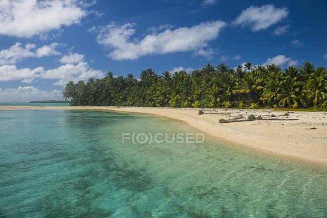 Isole Cook, Rarotonga, Laguna di Aitutaki, spiaggia di sabbia bianca e spiaggia di palme — Foto stock