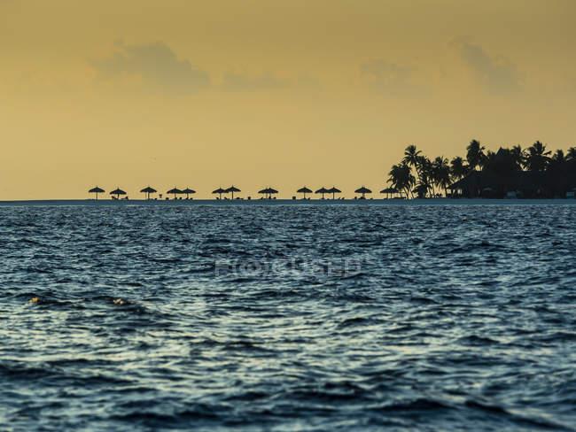 Maldive, Atollo di Ross, spiaggia con ombrelloni al tramonto — Foto stock