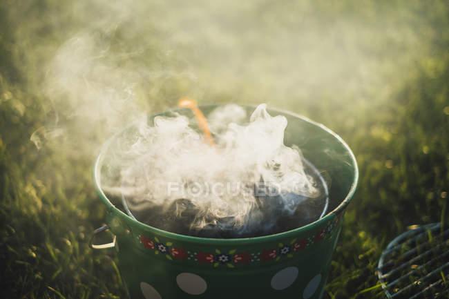 Куріння грилю на луці. — стокове фото