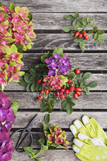 Hydrangeas and rosehips, gardening gloves and scissors on garden table — Stock Photo