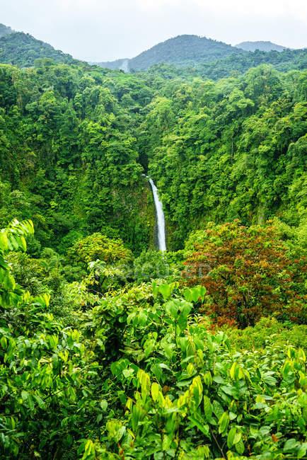 Costa Rica, Paysage de la jungle avec la cascade La Fortuna — Photo de stock