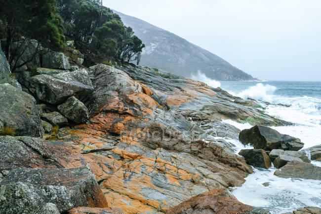 Австралия, Тасмания, Национальный парк Фрейсине, скалистое побережье — стоковое фото