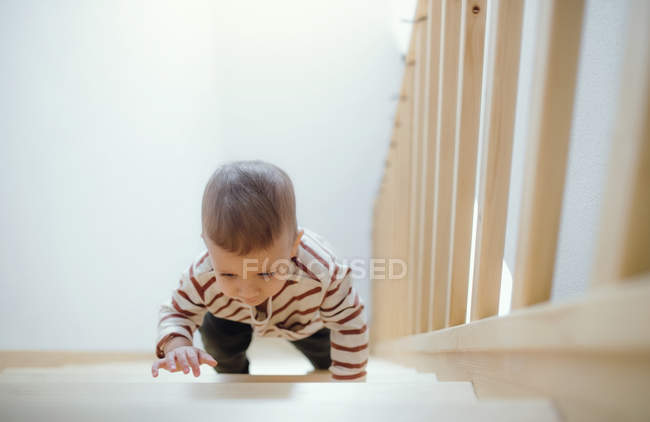 Toddler boy climbing up stairs at home — Stock Photo