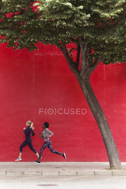 Две спортивные девушки бегут вместе по городу мимо красной стены — стоковое фото