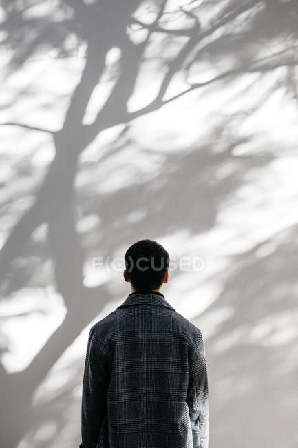 Back view of man looking on wall covered with shadows of a tree — Fotografia de Stock