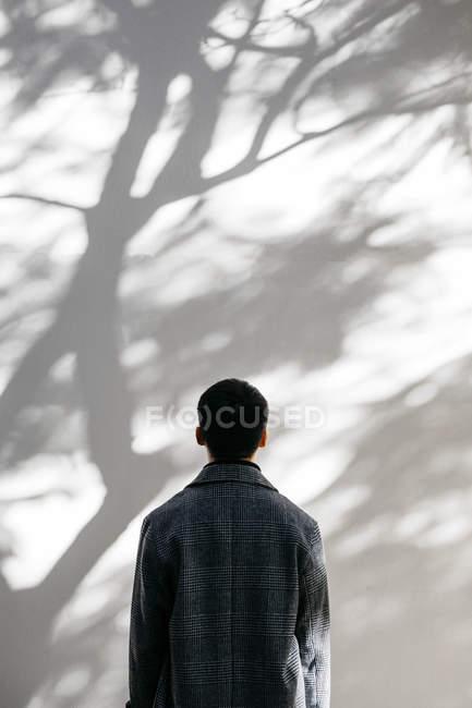 Retrovisore dell'uomo che guarda sulla parete coperta di ombre di un albero — Foto stock