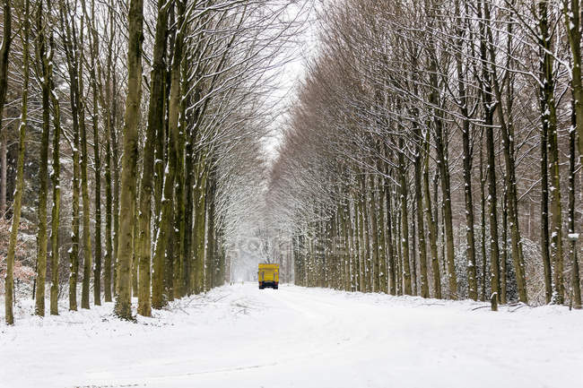 Back view of truck driving on snow-covered alley in winter — Stock Photo