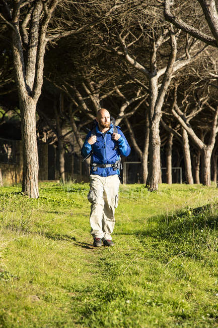 Randonneur avec sac à dos en forêt — Photo de stock