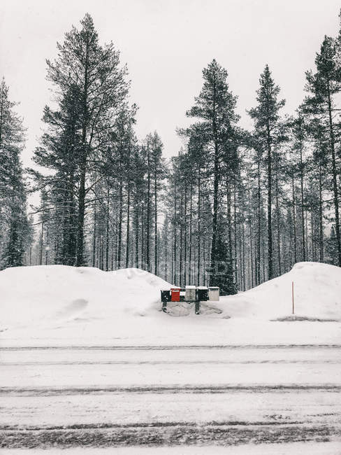 Finland, Lapland, heavy snowfall and mailboxes at the roadside - foto de stock