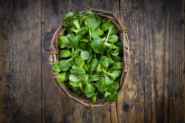 Салат из ягненка в плетеной корзине — стоковое фото