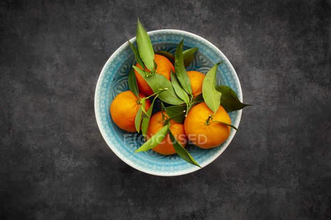 Clementinas en tazón, desde arriba - foto de stock