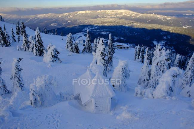 Германия, Бавария, Баварский лес зимой, Большой Арбер, заснеженные часовни Арбер — стоковое фото