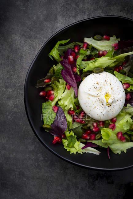 Salade orientale à la menthe, pistaches, graines de grenade et fromage burrata — Photo de stock