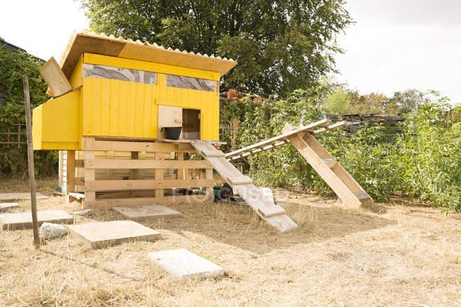 Casa di pollo in giardino di giorno — Foto stock