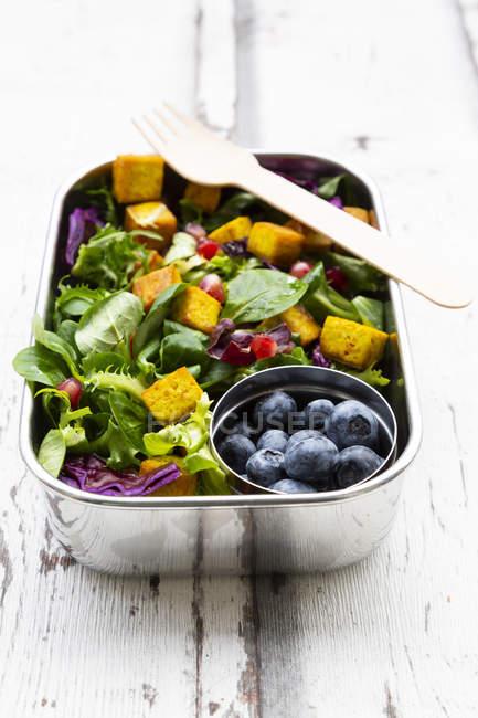 Salada mista com tofu torrado, repolho vermelho, sementes de romã, mirtilos e curcuma em lancheira — Fotografia de Stock