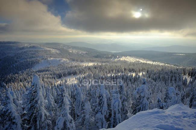 Германия, Бавария, Баварский лес зимой, Грейт-Арбер, вид на зимний пейзаж — стоковое фото