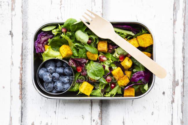 Змішаний салат з смаженою тофу, червоною капустою, гранатовим насінням, чорницею та куполовою в обідній коробці — стокове фото