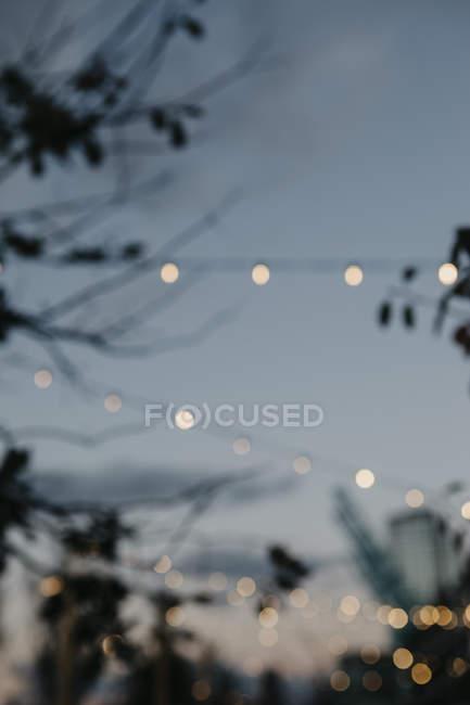 USA, New York, Brooklyn, fairy lights in the evening — Stock Photo