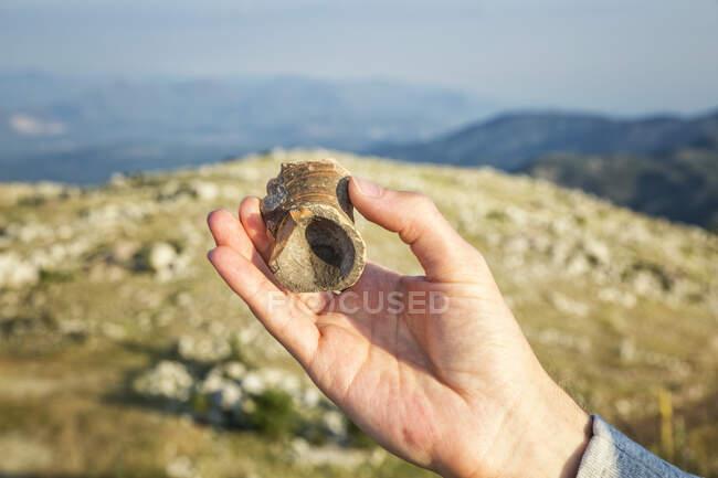 Греція, Пелопоннес, Аркадія (Лікайон), вручну тримає вазу на старовинному місці розкопок на горі Профітіс Іліас. — стокове фото