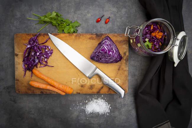 Preparación de repollo rojo casero, fermentado, con chile, zanahoria y cilantro - foto de stock