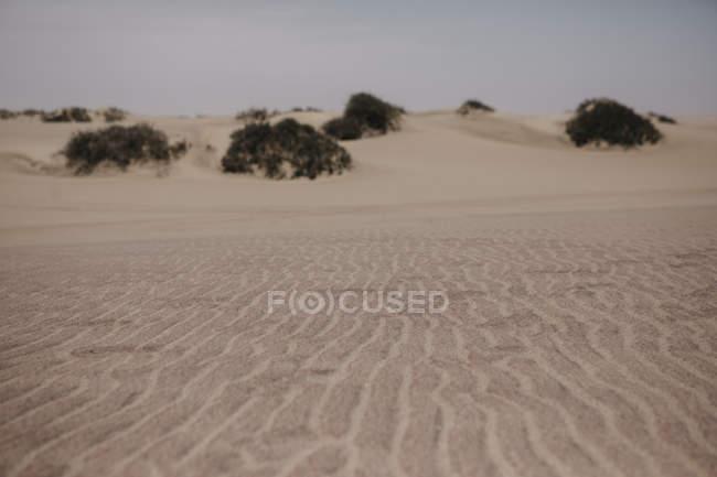 Namibie, Walvis Bay, sable dans le parc national Namib-Naukluft — Photo de stock