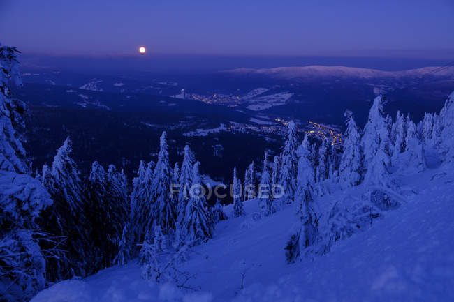 Germany, Bavaria, Bavarian Forest in winter, Great Arber, Arbermandl, snow-capped spruces at dusk with moon — Stock Photo
