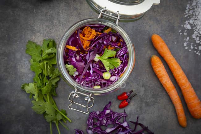 Hausgemachter Rotkohl, fermentiert, mit Chili, Karotten und Koriander, in einem Konservierungsglas — Stockfoto