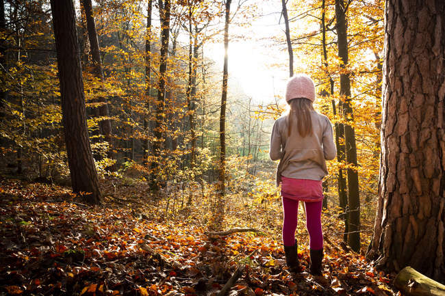 Young girl standing alone in autumn forest, rear view — Stock Photo