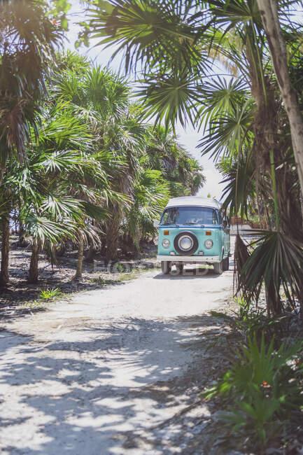 Мексика, Юкатан, Кінтана - Роо, Тулум, фургон на пляжі з пальмами. — стокове фото