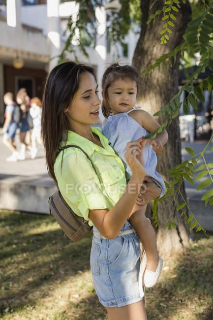 Мать объясняет дочери листья дерева — стоковое фото
