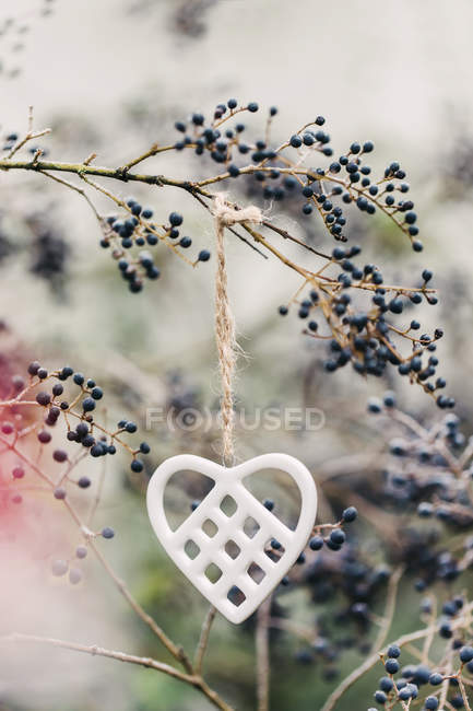 White porcelain heart hanging from twig — Stock Photo