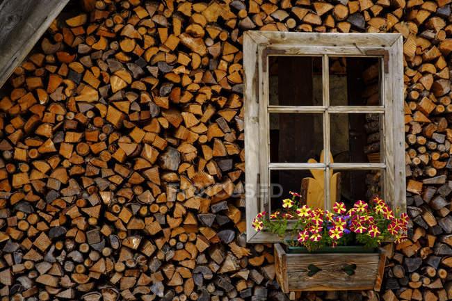 Италия, Тогуда, старый фермерский дом, дрова и окно с цветочной коробкой — стоковое фото