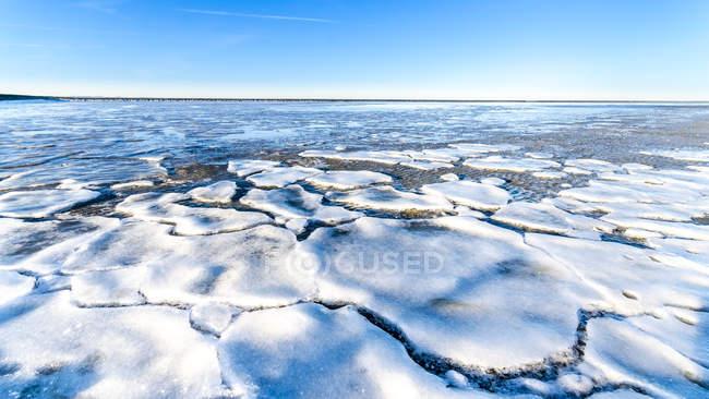 Allemagne, Basse-Saxe, Butjadingen, Mer du Nord, floes de glace en hiver — Photo de stock